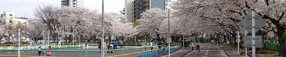 横須賀市の公園情報サイト